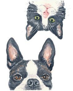 Tuxedo Cat Boston Terrier Watercolour PRINT 5x7 by WaterInMyPaint