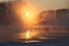 Bilhetes originais do que para Ballet: Lago dos Cisnes na Rússia você pode ...