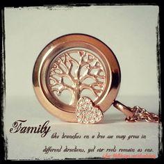 Family Tree ❤️ #familytree #family #makelifebeautiful #shd #southhilldesignsbyeileenladwig #southhilldesigns #joinmyteam #lovemyjob #workathome #workfromhome #lovefamily www.southhilldesigns.com/eileenladwig