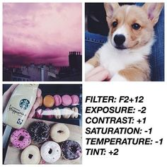 VSCO filters : Photo