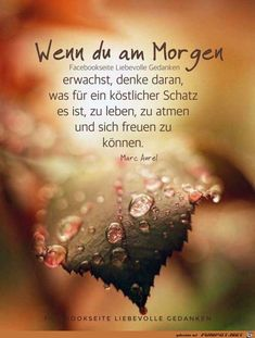 Financial support would not be bad . Is not everything easy, tr . Morning Affirmations, Positive Affirmations, Cool Words, Wise Words, Sad Quotes, Life Quotes, Amazing Inspirational Quotes, German Quotes, German Words