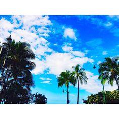 【560photography】さんのInstagramをピンしています。 《560photography🗺 今日は一日中どんよりした天気だなー 雨よりやっぱり晴れが好き☀️ すっかり秋になっちゃったなー 雨だとなんとなく怠くなっちゃう悪い癖。笑 【ゆず】の【また会える日まで】 青い空 白い雲 勇気をもって踏み出そう 想い出すと笑いあえる 楽しい想い出 大好きなみんなの笑顔が宝物 強いきずなを 僕は忘れないよ… またあえる日まで 夢を忘れずに 変わらないままで ずっといようよ またあえる日まで 夢を叶えよう 信じる事が 心をつなぐ  自分を信じて 一歩進めば何かつかめるさ 少し夢を大きくして 君は一人じゃないから 一生に一度の宝物 さみしいけれど 泪ふいて旅立とう… またあえる日まで 流れ星に願った 飾らない心で ずっといようよ またあえる日まで 輝く星に誓うよ 出逢えた事を忘れはしない またあえる日まで… … 📜最近いろんなアーティストの歌詞に共感する年頃になったみたいで、歌詞みていろいろ考えてます…笑 🛫ハワイ行きたい🛬 waikikibeachの近くでパシャり📸…