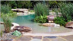 Natural Pool/Ponds