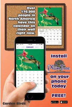 2021 Garden Song Birds Wall Calendars low as Advertise your business, organization or event logo and ad message the entire year! Garden Birds, Daily Activities, Appointments, Motorbikes, North America, Golf Courses, Organize, Calendar, Wildlife