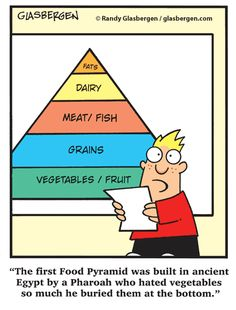 Where the food pyramid really came from hehe