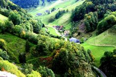 The Black Forest, or Schwarzwald to give it its German name, is famous the world…