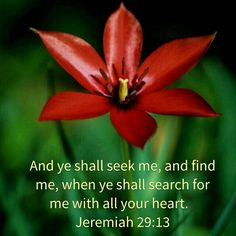 Jeremiah 29:13 KJV