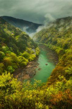 tulipnight:  The Kyoto Connection byMatt Jackisch