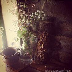 Bildergebnis für witches cottage wicca