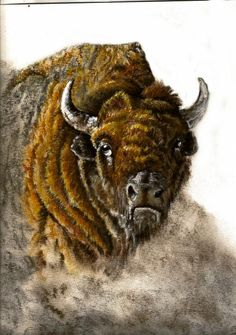 Buffalo Pastel Painting, Framed by CorteseCreations on Etsy