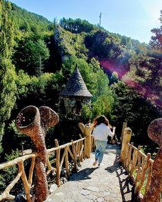 Barcelona, Antoni Gaudi, Andorra, Places To Go, Traveling, Cat, Country, Photos, Ideas