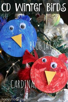 CD WINTER BIRDS CRAFT FOR PRESCHOOLERS: Turn an old cd into a vibrant blue jay or cardinal with this simple winter birds craft. Great craft to extend a preschool bird unit at this time of year.