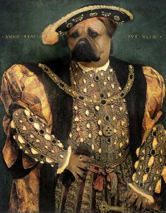 Henry Viii As A Mastiff Digital Anthropomorphic Art Creative Portraits, Dog Portraits, Portrait Renaissance, Animal Dress Up, Pet Costumes, Human Art, Animal Heads, Pet Clothes, Animals And Pets