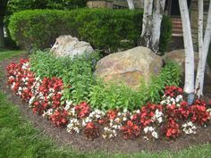 Planting around boulders can really pull a landscape together. #lawn #flowers
