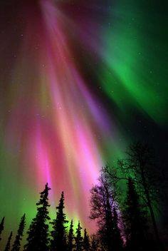 Aurora Borealis, Northern Lights #colors #amazing #wondersoftheworld