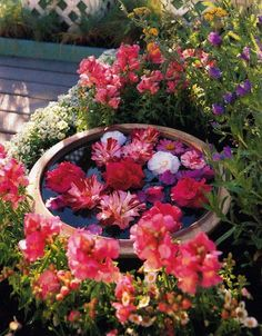 You don't need a pond to enjoy a water garden. I have seen some tutorials for making small ones. Using floating flower arrangements are a great way to fill in bare spots in the garden for a special event. Garden Art, Garden Plants, Garden Ideas, Garden Water, Water Gardens, Dream Garden, Rose Arbor, Floating Flowers, English Country Gardens