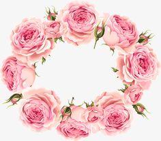 Beautiful roses invitation design vector material
