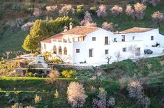 Organic Farm Retreat, Malaga, Andalusia, Spain