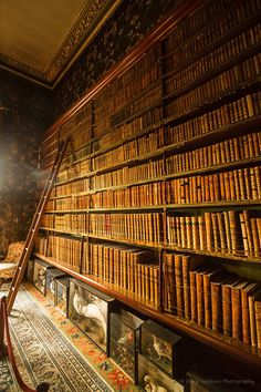 Beautiful Libraries and Bookshops...'Spooks in the Library' by Gary Seddons, happymillerman via Flickr.