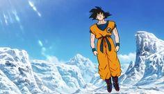 Goku -20ème Film