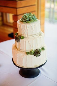 Succulent decoration for three-tier buttercream frosting wedding cake; two small clusters with one large succulent on top
