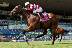 Rallying toward the center of the course, Dimension scored an upset victory in the $200,000 King Edward Stakes (Can-II) July 2, 2016 at Woodbine.