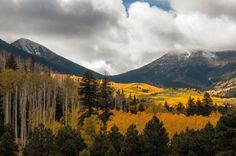 Flagstaff Fall Color   2014-2015 Arizona Highways Photo Contest -  Flagstaff Fall Color Submitted by: Tam Ryan Fall color and a first snow on the San Francisco Peaks begins a change in the weather in Flagstaff, Arizona.