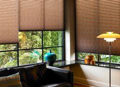 brown blinds - classy - living room ideas - plisy - kolory ziemi - salon - pokój dzienny - rolety wewnętrzne podobne do tych ze strony http://sklepzoslonami.pl/systemy-oslonowe/plisy.html