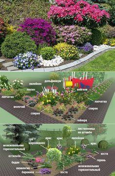 Клумбы непрерывного цветения – схемы с описанием цветов Garden Fencing, Garden Art, Herb Garden, Garden Plants, Vegetable Garden, Garden Design, Landscaping Supplies, Front Yard Landscaping, Outdoor Flowers