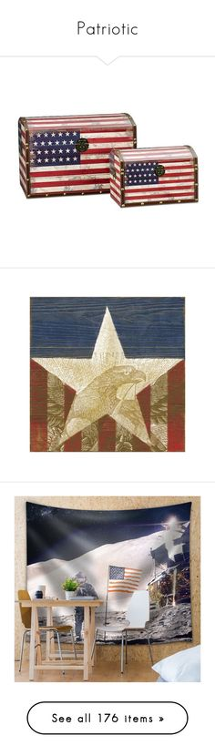 """""""Patriotic"""" by sjk921 ❤ liked on Polyvore featuring home, home decor, wall art, canvas art, wall decor, bird home decor, american flag home decor, american flag wall art, bird canvas wall art and bird wall art"""