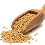 Horčica a horčičné semienka | Peknetelo.eu