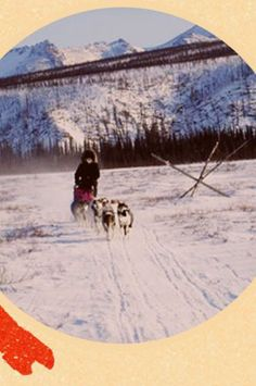 One-person-business Laughing Husky Enterprises keeps mushers moving in the punishing conditions near the Arctic Circle.