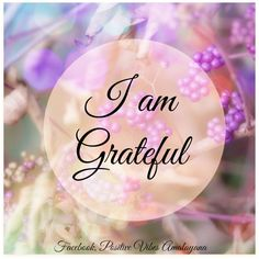 I am Grateful for everything in my life today   #Gratitude #Blessing #Love