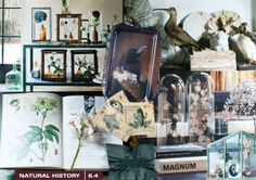 Historia Natural | Trendcollage interieur 2014/2015 | © Milou Ket