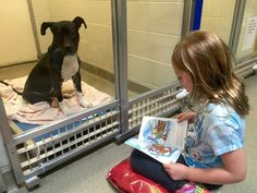 New Program Lets Kids Practice Reading While Shy Shelter Dogs Learn to Socialize READ THE STORY HERE: http://cutesypooh.com/new-program-lets-kids-practice-reading-shy-shelter-dogs-learn-socialize/