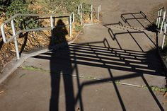 1392 | Flickr - Photo Sharing!