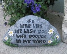how to stop a dog from pooping in my yard