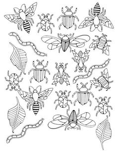 coloriage insectes Plus Vintage Embroidery, Embroidery Patterns, Hand Embroidery, Embroidery Stitches, Embroidery Sampler, Blackwork Embroidery, Colouring Pages, Adult Coloring Pages, Bug Art