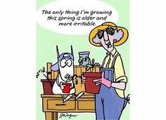 Maxine On Growing Older | Maxine Cartoons / growing older and more irritable