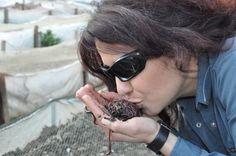 Ekosol #BurçinKarababa #solucangubresi #solucangubresi #organic #life #vermicompost #gübre #rivasol #kirmizikaliforniya #organikgubre #organik #solucan #solucangubresi #worm #vermicomposting #tarim #doğal #compost #iyitarim #dogalgubre #vermikem