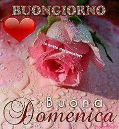 Immagini Belle da ImmaginiBuongiornoBelle.it Italian Memes, Italian Quotes, Good Night Friends, Happy Sunday, Vegetables, Positano, Favorite Quotes, Pizza, Facebook