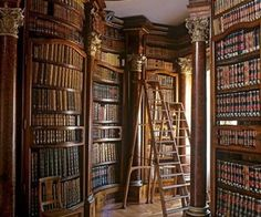 90 Home Library Ideen für Männer – Private Reading Room Designs - Mann Stil Library Room, Dream Library, Cozy Library, Library Ideas, Library Inspiration, Vienna Library, Belle Library, Library Ladder, Library In Home