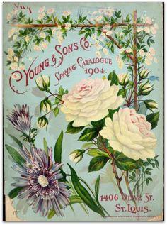 vintage spring garden catalog, LOVELY! ✿✿✿