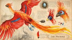 If you're a big fan of the Harry Potter series, then hold onto your seat. The illustrated edition of Harry Potter and the Chamber of Secrets is here and it's Phoenix Harry Potter, Arte Do Harry Potter, Theme Harry Potter, Harry Potter Universal, Harry Potter Characters, Harry Potter Ilustraciones, Illustrations Harry Potter, Phoenix Artwork, Fantastic Beasts