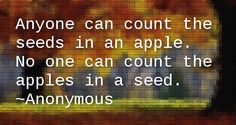 The Funny Thing About Apple Seeds