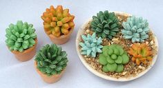 Air Dry Clay Tutorials: Make a Miniature Succulent Plant