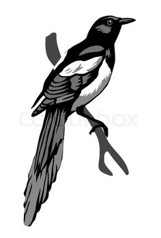 Image result for magpie tattoo