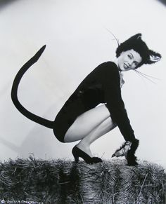 black, cat, catwoman, costume, dusty anderson