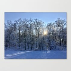 Winter Landscaping Canvas Print by tanjariedel | Society6 Free Shipping today 👉🏼 https://society6.com/product/winter-landscaping_stretched-canvas?sku=s6-6542783p16a6v28👈🏼 #s6 #society6 #society6 #society6art #prints #gifts #sale #sales #winter #landscapephotography #landscape #interior #interiordesign #snow #today #heute #landschaft