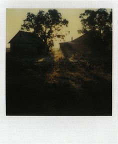 Myasnoye, October 2, 1981    Instant Light: Tarkovsky Polaroids    Edited by Giovanni Chiaramonte & Andrei Tarkovsky  Introduction by Tonino Guerra    Thames & Hudson  2004  ISBN: 0 500 28614 0    www.worldcat.org/oclc/62796344